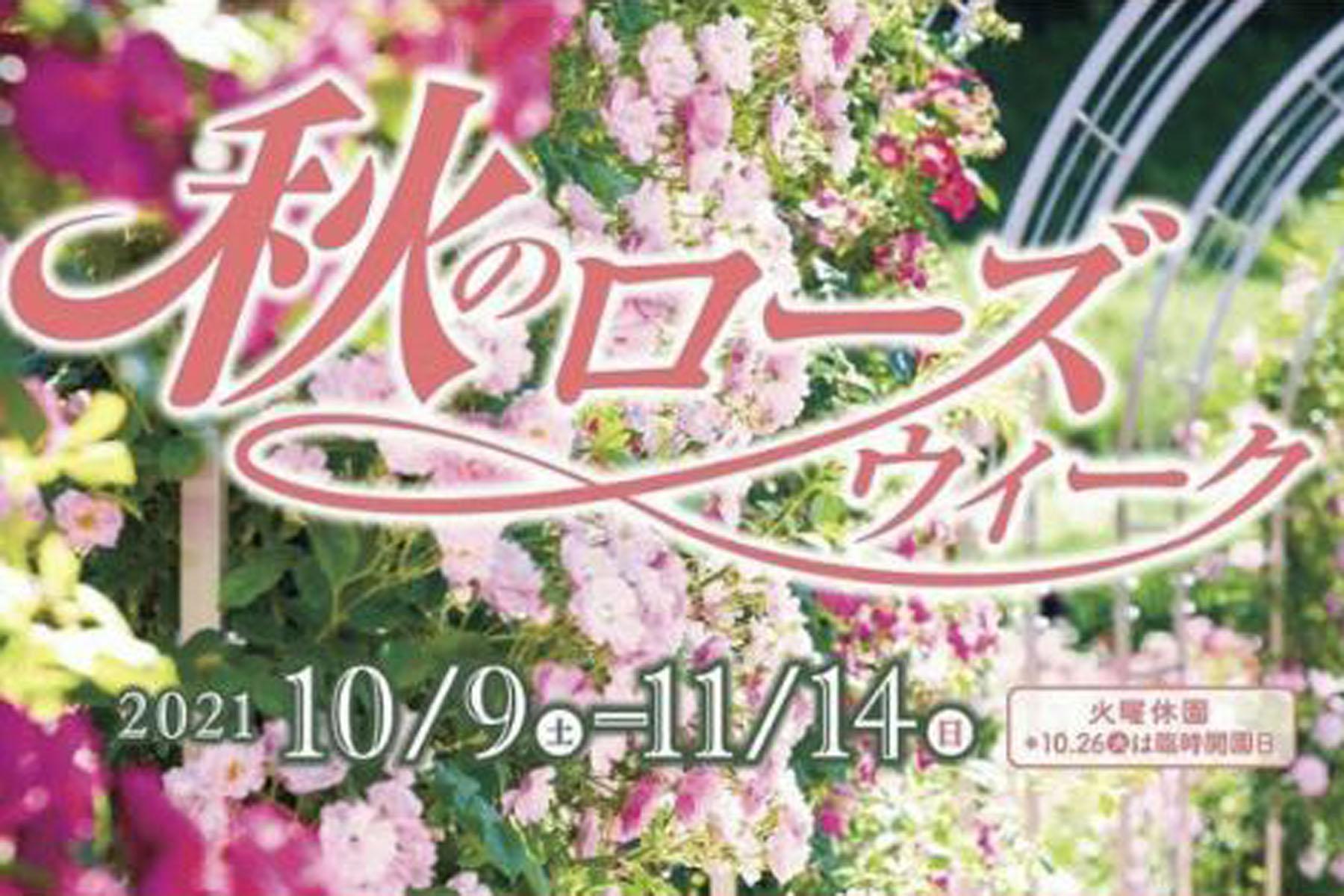 10月17日(日)、31日(日)秋のローズウィーク・ワークショップ in 岐阜県