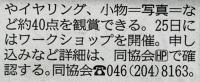 神奈川新聞iバザール2.jpg