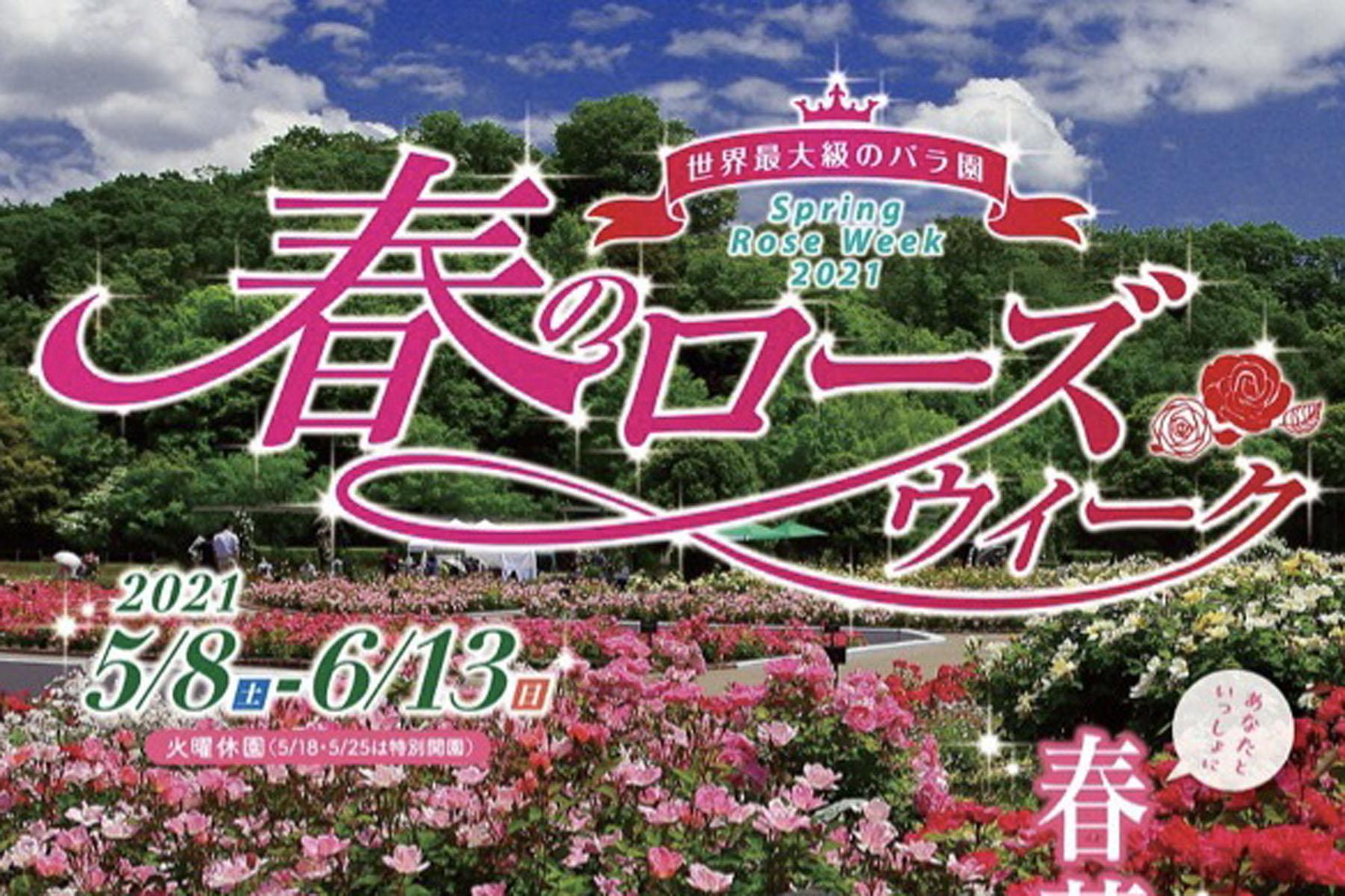 5月15日(土)16日(日),29日(土)30日(日)</br>あなたといっしょに紙薔薇に癒されて in 岐阜県